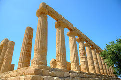Colonnade of Hera (Juno) temple in Agrigento. Stock Images