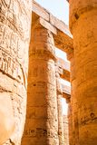 Colonnade in Egypt. Colonnade Karnak Temple in Luxor. Egypt royalty free stock images