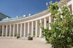 Colonnade met groene struik Stock Foto's