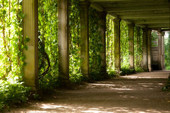 Colonnade with the old columns Stock Photography
