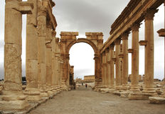 Colonnade of Palmyra. A view of Palmyra, on the Syrian desert Stock Images