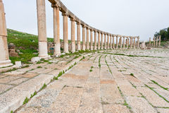 Colonnade on the roman oval forum in Jerash Stock Photos