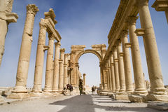 Colonnade in roman ruins of Palmyra, Syria. Lower view of the ancient colonnade during a hot-summer day in the desert stock image