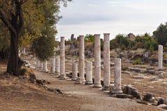 Colonnaded gata för forntida sida Royaltyfri Fotografi