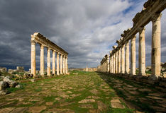 The colonnaded street of Apamea Stock Image