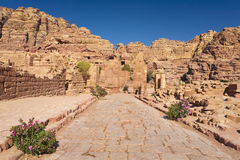 The Colonnaded Street in Petra Royalty Free Stock Images