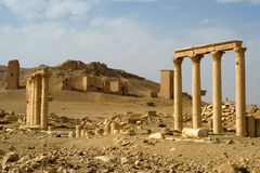Colonnades and Necropolis, Palmyra. Roman columns at the southern end of the great city of Palmyra in the Syrian desert.  In the background are the funerary Stock Images