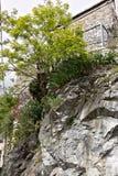 Colonnata, Carrara Una casa tipica del villaggio costruita sopra il bianco fotografie stock libere da diritti