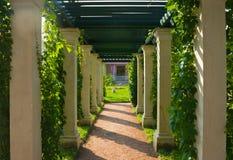 Colonnato ombreggiata Immagine Stock