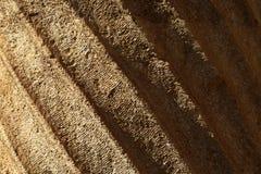 Colonne archéologique images stock