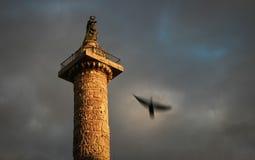 Colonne del Adrian - Roma - Italia fotografia stock libera da diritti