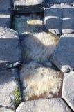 Colonne del basalto dell'Irlanda del Nord della strada soprelevata del gigante fotografia stock