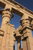 Colonne del tempiale di Philae Fotografie Stock