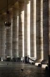 Colonne del Vaticano con un uccello Fotografia Stock