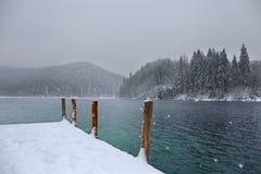 Colonne di legno che custodicono il lago di inverno fotografia stock libera da diritti