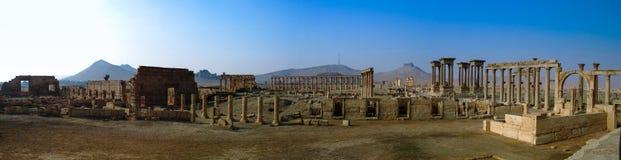 Colonne di Palmira di panorama e città antica, distrutte da ISIS, la Siria Immagini Stock Libere da Diritti