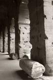 Colonne di Roman Coliseum nell'immagine di BW, Italia fotografia stock libera da diritti