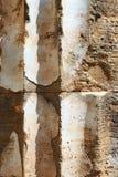Colonne doric antique avec le plâtre, Selinunte Photos stock