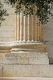 Colonne grecque Images libres de droits