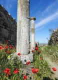 Colonnes antiques contre le jour actuel augmentant le chemin Photos stock