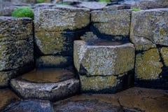 Colonnes de basalte à la chaussée de Giants Images libres de droits