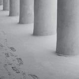 Colonnes et traces dans la neige Photo libre de droits