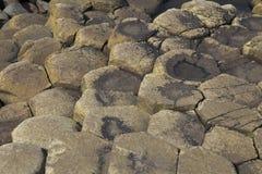 Colonnes polygonales de roche de lave de basalte de la chaussée géante du ` s Images libres de droits
