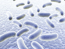Colony of bacteria. Colony of pathogen bacteria - 3d render Stock Photography