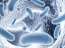 Colony of bacteria. Colony of pathogen bacteria - 3d render Stock Image