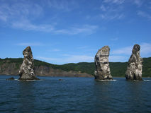 Colony bird on the high rocks in the Avacha bay. Summer. Kamchatka Peninsula, Russia Royalty Free Stock Photo