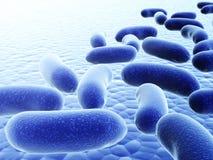 Colony of pathogenic viruses Royalty Free Stock Photos
