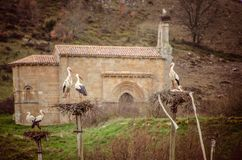 Colony of storks with the background of the Church of Santa Eulalia, in the Barrio de Santa Maria stock image