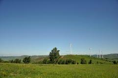Coloqúese orgulloso entre los molinoes de viento en la pradera Imagen de archivo libre de regalías