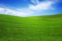 Coloque con la hierba verde y el cielo azul con las nubes en la granja en día soleado hermoso del verano Limpio, idílico, paisaje foto de archivo libre de regalías