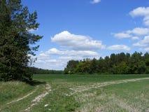Coloque el camino cerca del bosque debajo del cielo Fotos de archivo