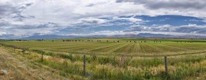 Coloque en el valle cerca de Logan en Utah fotografía de archivo libre de regalías