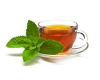 Coloque o chá com hortelã em um fundo branco. Imagens de Stock Royalty Free