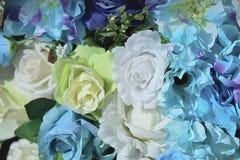 Coloré artificiel du fond de décor de fleur de Rose pour le message textuel Photo libre de droits