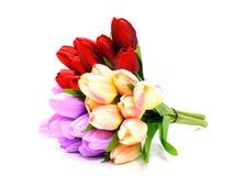 Coloré de la tulipe artificielle fleurit le bouquet sur le fond blanc Photo libre de droits