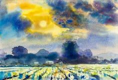 Coloré du gisement de montagne et de riz dans l'émotion du coucher du soleil illustration stock