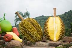 Coloré les grands fruits asiatiques ouvrés avec le fond de ciment Photo stock