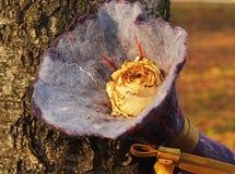 Coloré séchez rose sur l'écorce d'arbre photo stock