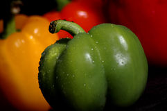 Color. A green peper in front of a line of yellow, orange, and red peppers royalty free stock image