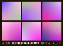 Color abstract blurred background set. Pink lilac violet palette. Smooth design elements collection flower concept. Color abstract blurred background set. Pink Royalty Free Stock Photography