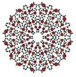 Color abstracto floral circular de la imagen Imágenes de archivo libres de regalías