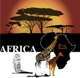 Color Africa Background Royalty Free Stock Photos
