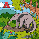 Color alphabet for children: letter A (anteater) Royalty Free Stock Photo