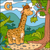Color alphabet for children: letter G (giraffe) Stock Image