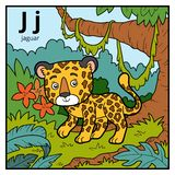 Color alphabet for children, letter J jaguar. Vector color alphabet for children, letter J jaguar Stock Photo