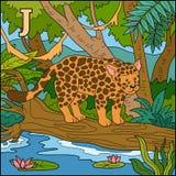 Color alphabet: letter J (jaguar). Color alphabet for children: letter J (jaguar Vector Illustration